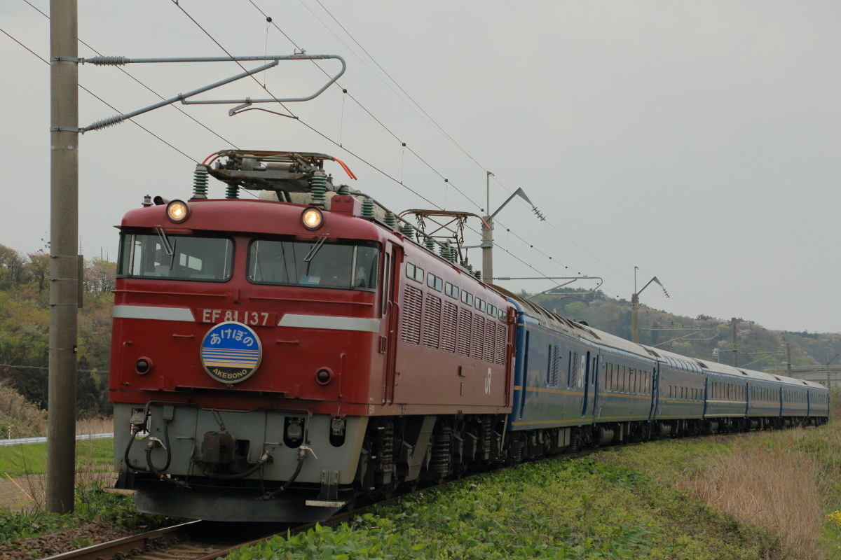 Img52636