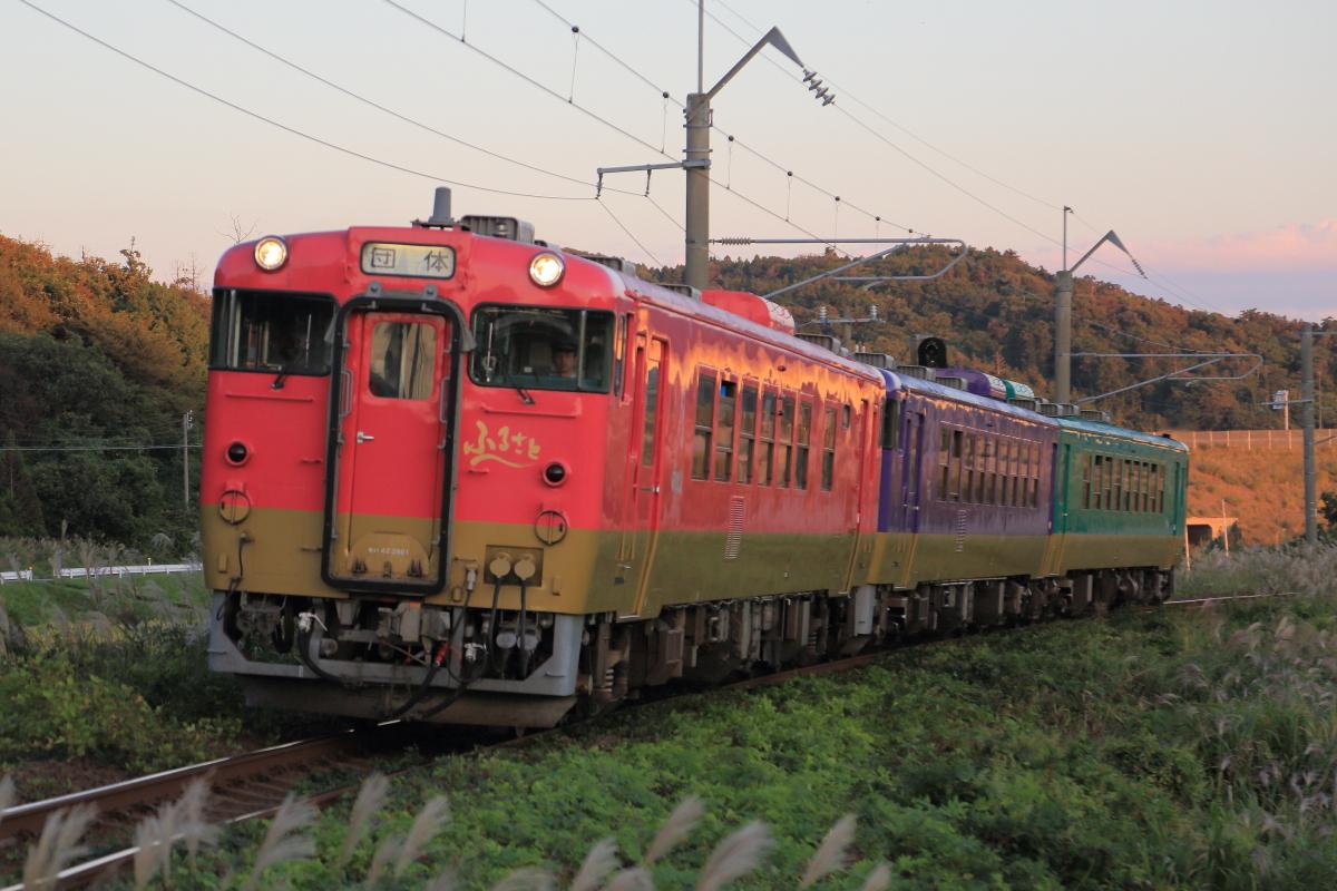 Img54335