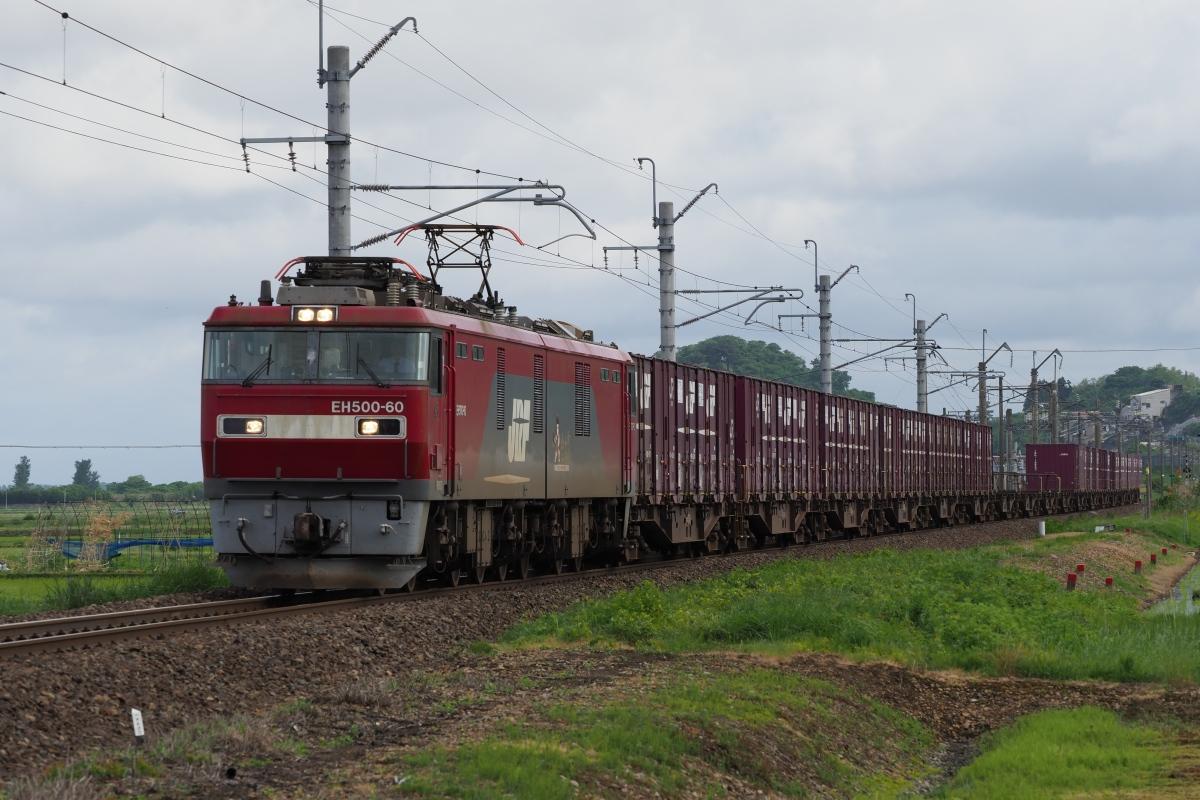 P5281224