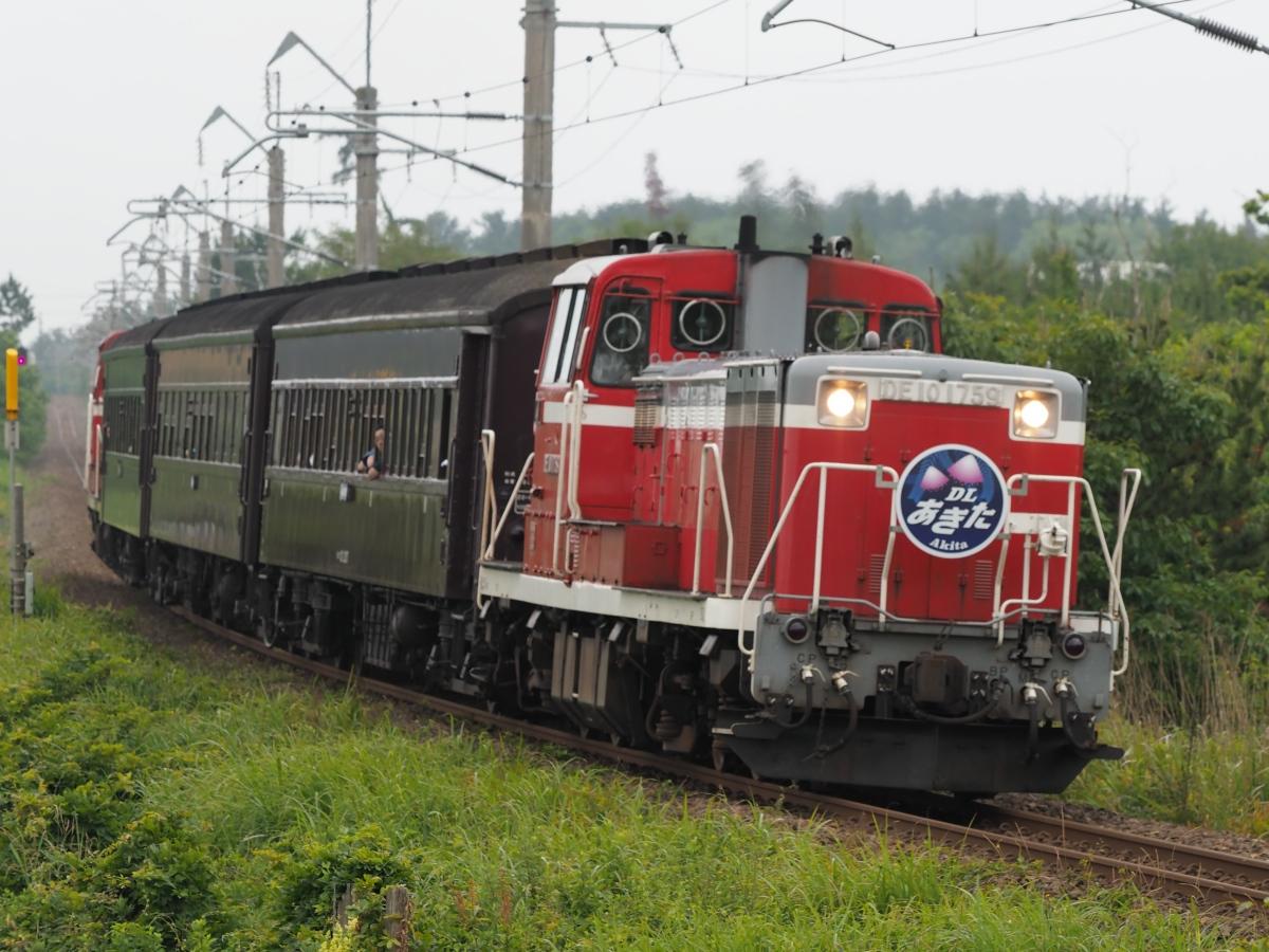 P6250232_2