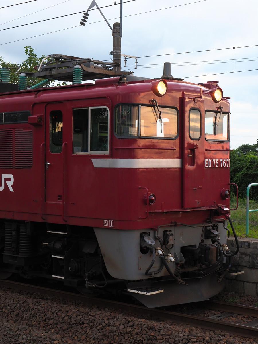 P81901452