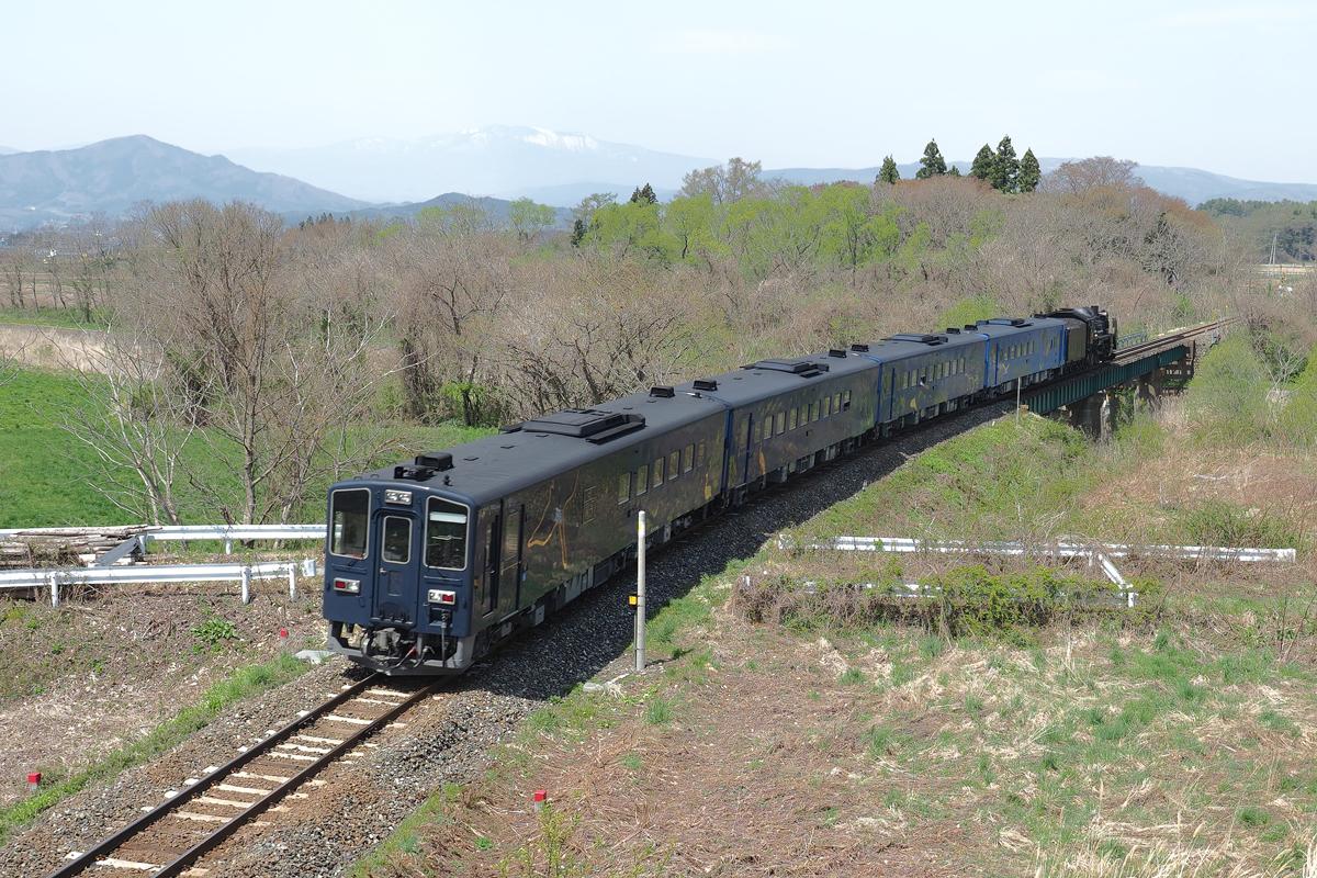 P4292555