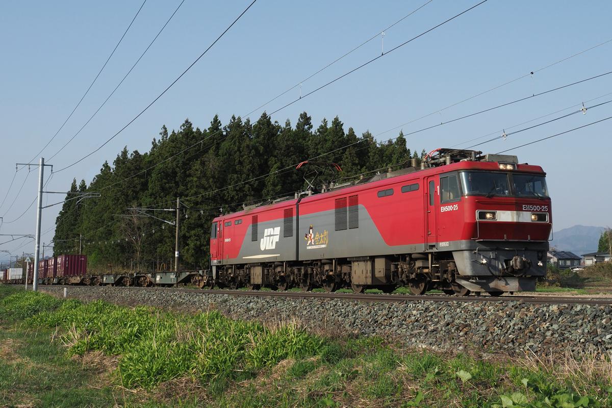 P4292720