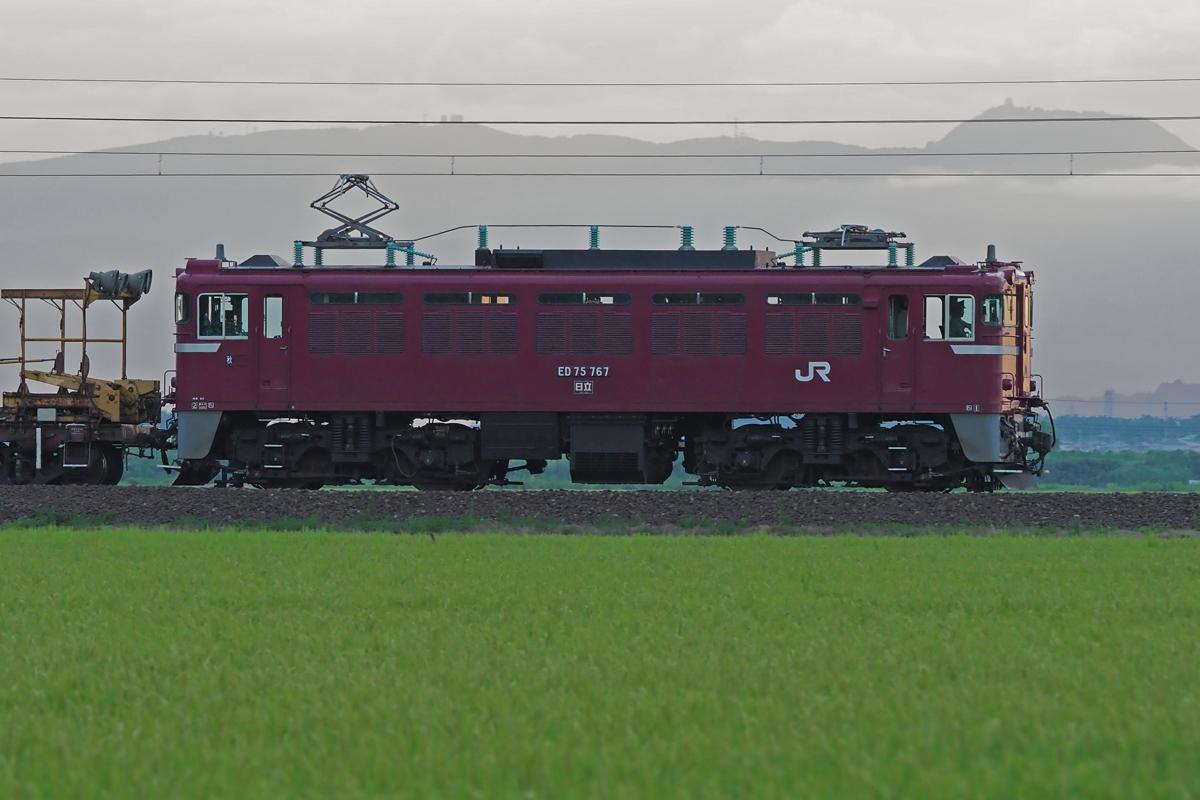 P8190035m
