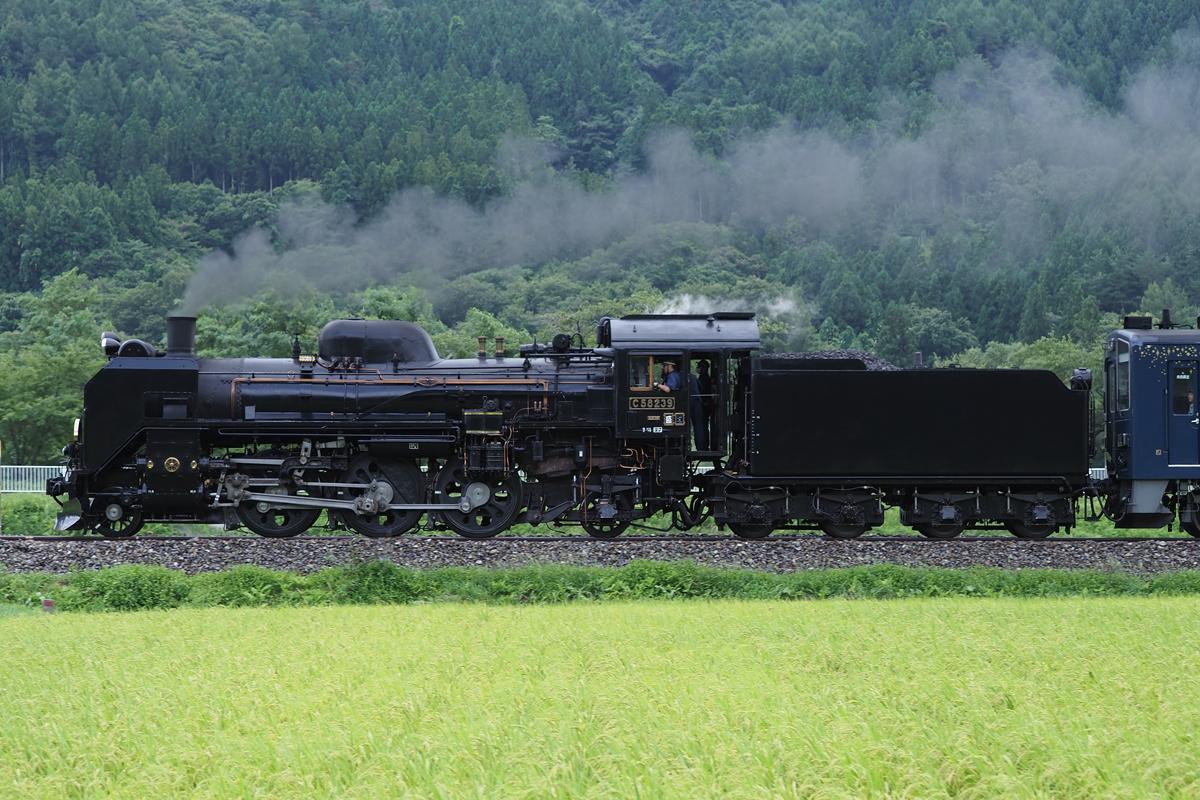 P8250341